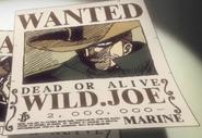 Wild Joe bounty
