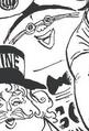 Tamagon Manga Post Timeskip Infobox.png