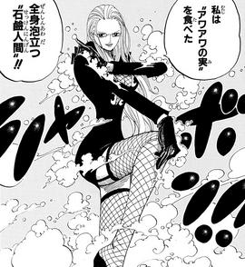 Awa Awa no Mi Manga Infobox