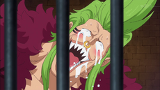 Bartolomeo réaction Zoro