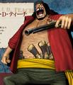 Marshall D. Teach Pirate Warriors 3