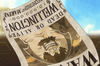 Wellington's Anime Wanted Poster