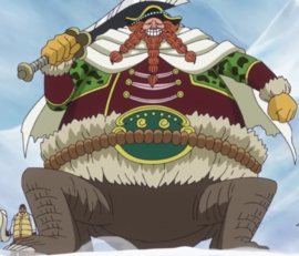 Brownbeard Anime Post Timeskip Infobox