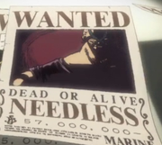 180px-Needless bounty