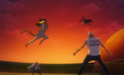 Sabo Fights Lucci