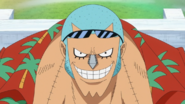 Franky Standard Post Timeskip Hair