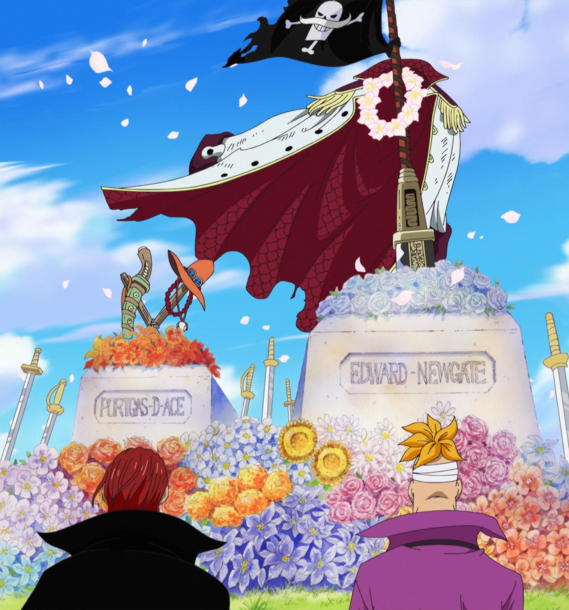 Portgas D. Ace/History | One Piece Wiki | Fandom