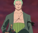 Roronoa Zoro/History/During and After the Timeskip