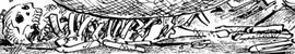 Katsuzo Manga Infobox