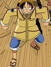 Luffy Tampilan Pemburu Es