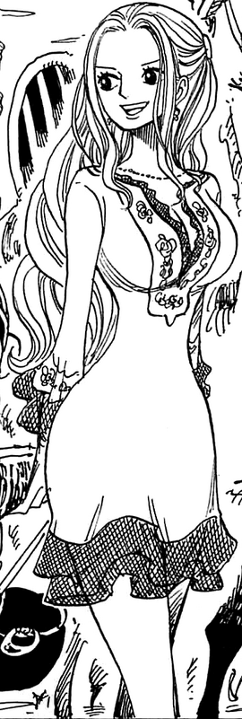 Nefertari Vivi Manga Post Timeskip Infobox