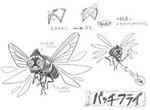 Batch Fly