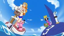 Brook, Nami, Momonosuke y Chopper transformados