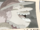 Charlotte Linlin's Second Wanted Poster.png