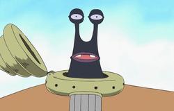 Escargophone Noir