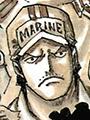 Stainless Jeune Marine