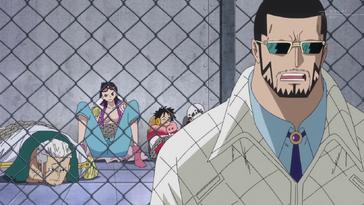 Vergo devant la cage Anime