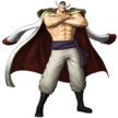 Whitebeard Pirate Warriors 3