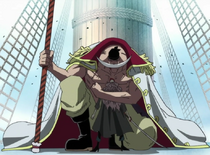 Whitebeard Forgives Squard