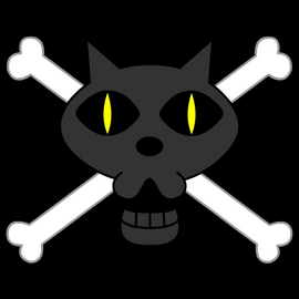 Equipage du Chat Noir Jolly Roger