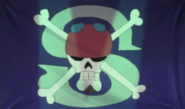 Silver Pirate Alliance's Jolly Roger