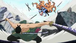 Zoro sconfigge Hyozo