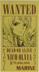 Nico Olvia's Wanted Poster