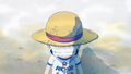 Fight Together Luffy Chapeau