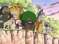 Island of Rare Animals Infobox