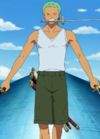 Zoro Spa Island Arc Outfit