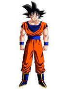 Goku 0