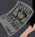 Nico Robin Avis de Recherche Erroné Anime