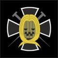 Piratas de Hawkins bandera