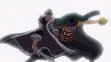 Crocodile vs. Robin