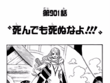 Chapter 901