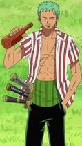 Roronoa Zoro Anime Pre Timeskip Infobox