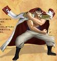 Shirohige Pirate Warriors 2