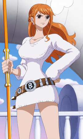 Nami Anime Post Timeskip Infobox