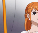 Nami/Personality and Relationships