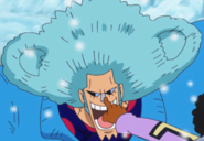Franky's Bear Hair