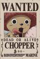 Tony Tony Chopper Avis de Recherche Post Enies Lobby