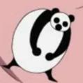 Dosko1 Panda Portrait