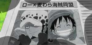 Alliance Luffy-Law