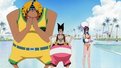 Foxy Pirates Swimsuits
