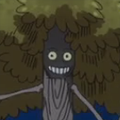 Big Tree Portrait