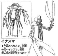 Inazuma boceto