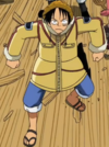 Luffy Ice Hunter Arc Outfit