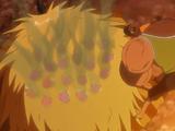 Monkey D. Luffy, Roronoa Zoro, Vinsmoke Sanji, Usopp e Tony Tony Chopper Vs Shiki
