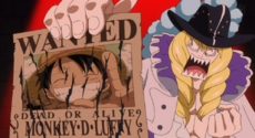 Cavendish Wanted Luffy
