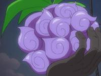 Dark Dark frutto
